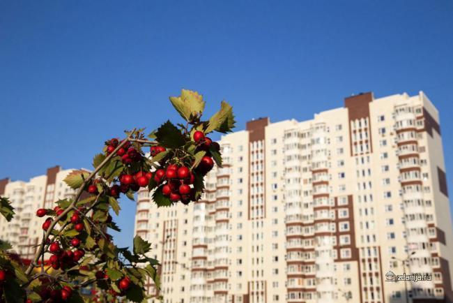 Москва, поселение Десеновское, Нововатутинский проспект, дом 10 (Новомосковский АО, район Десеновское)