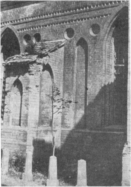 Фрагмент южного фасада францисканского костела