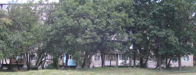 серия 1-468А с планировками квартир (отр.адм.) Ищу серию дома, панельная пятиэтажка, Харьков.