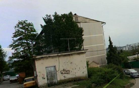 Сочи ул. Пасечная дом 14