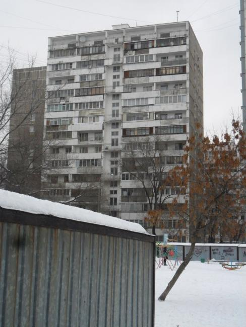 Москва, Ташкентская улица, дом 17, корпус 2 (ЮВАО, район Выхино-Жулебино)