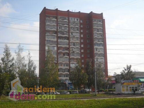 холмогорова-2